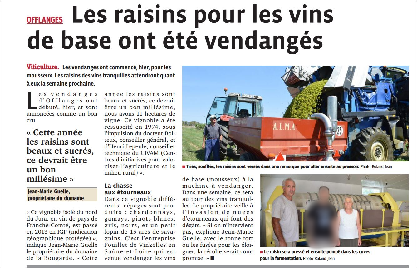 Article Vendanges 2017 1/2