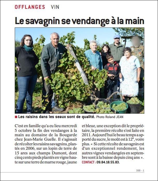 Article Vendanges 2017 2/2